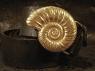 Ремень из кожи авторский золотая Ракушка фото 1